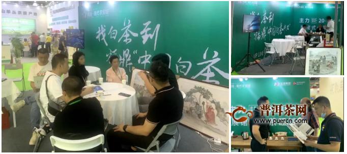 中国白茶中心亮相上海茶博会