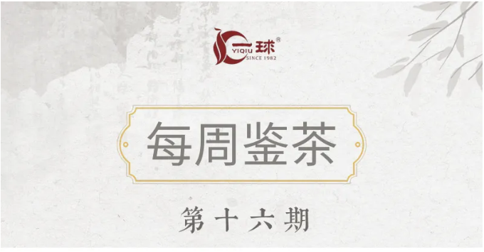 """一球茶业每周鉴茶:知""""竹""""常乐"""