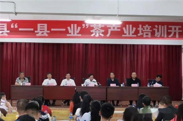 """双江县""""一县一业""""茶产业技能培训系列报道之开班典礼"""