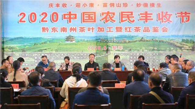 黔东南州举办茶叶加工暨红茶品鉴会庆祝丰收节