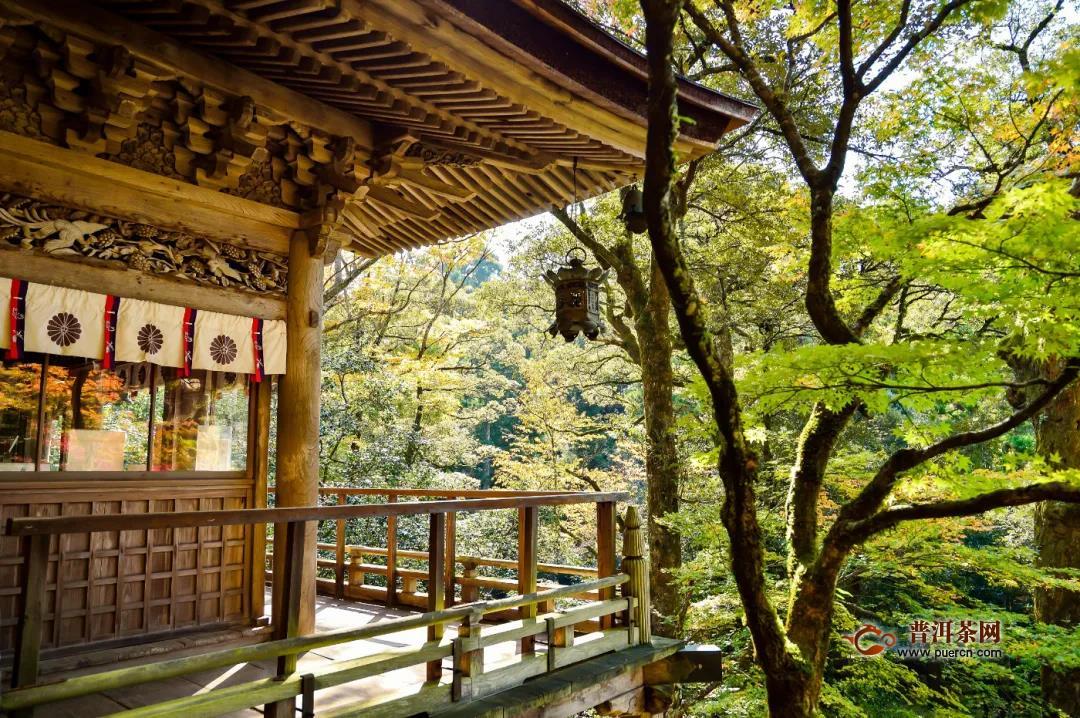 中日茶文化的历史渊源
