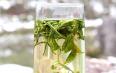 过量饮用黄茶有哪些副作用