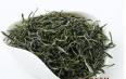 信阳毛尖绿茶正确泡法