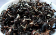东方美人属于哪一类茶叶