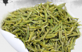 黄茶代表的品种