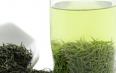 绿茶的用途主要包括