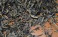 武夷岩茶正山小种产地