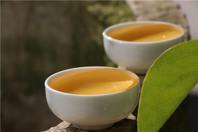 喝不懂的普洱茶,到底在喝什么?