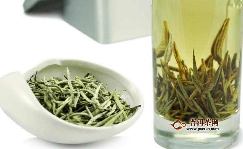 白茶哪个季节饮用适宜