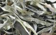 白茶所具备的功效与作用