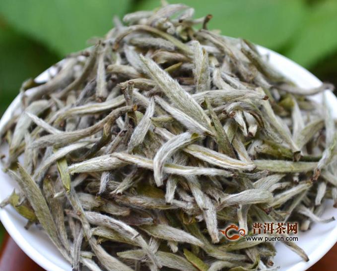 白茶正常能保存多久