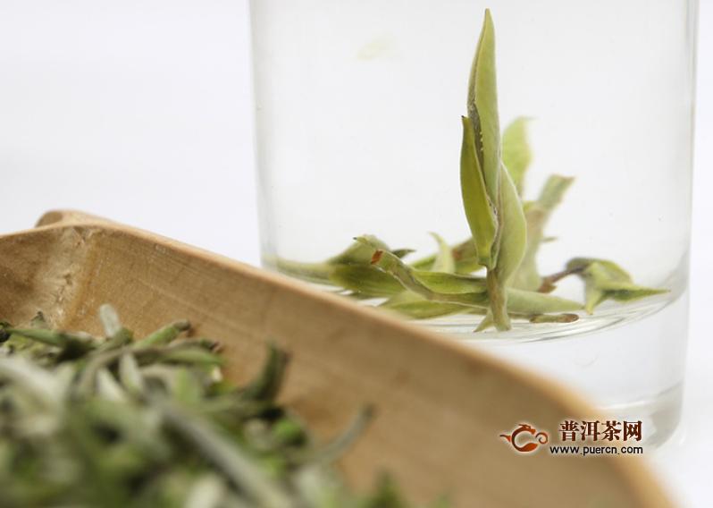 白茶的功效与泡法