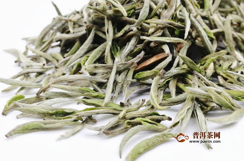 白茶是怎么加工制作的