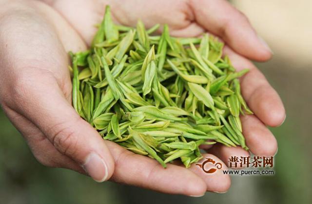 好的安吉白茶是多少钱一斤