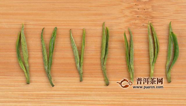 安吉白茶制作需要多长时间呢