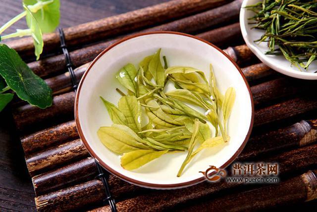 安吉白茶属于发酵茶是不是
