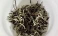 饮用白茶陈皮的作用及禁忌症