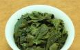 铁观音是什么茶叶种类