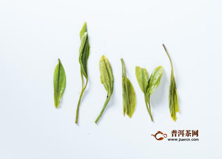 好的都匀毛尖绿茶具备什么特征