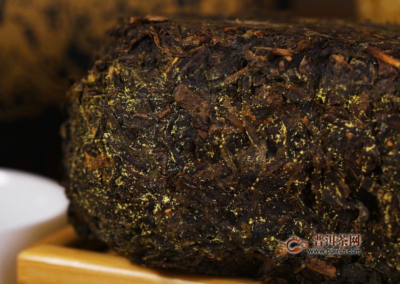 如何判断黑茶是否霉变