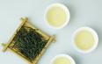 都匀毛尖绿茶要如何冲泡