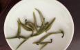都匀毛尖绿茶要如何分辨优劣
