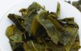 冻顶乌龙茶是不是绿茶呢